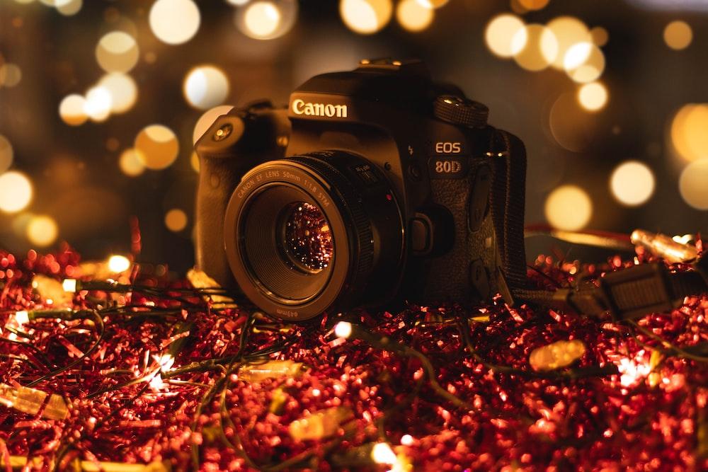 Canon DSLR camera photo – Free Camera Image on Unsplash