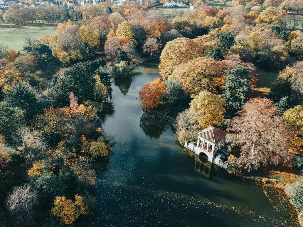 white and brown house beside body of water and trees