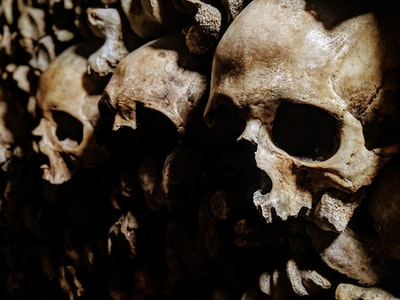 stack human bones photo skull teams background