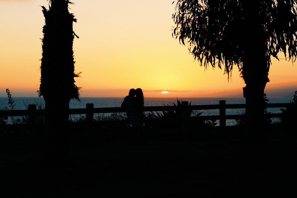 silhouette of couple during sunset