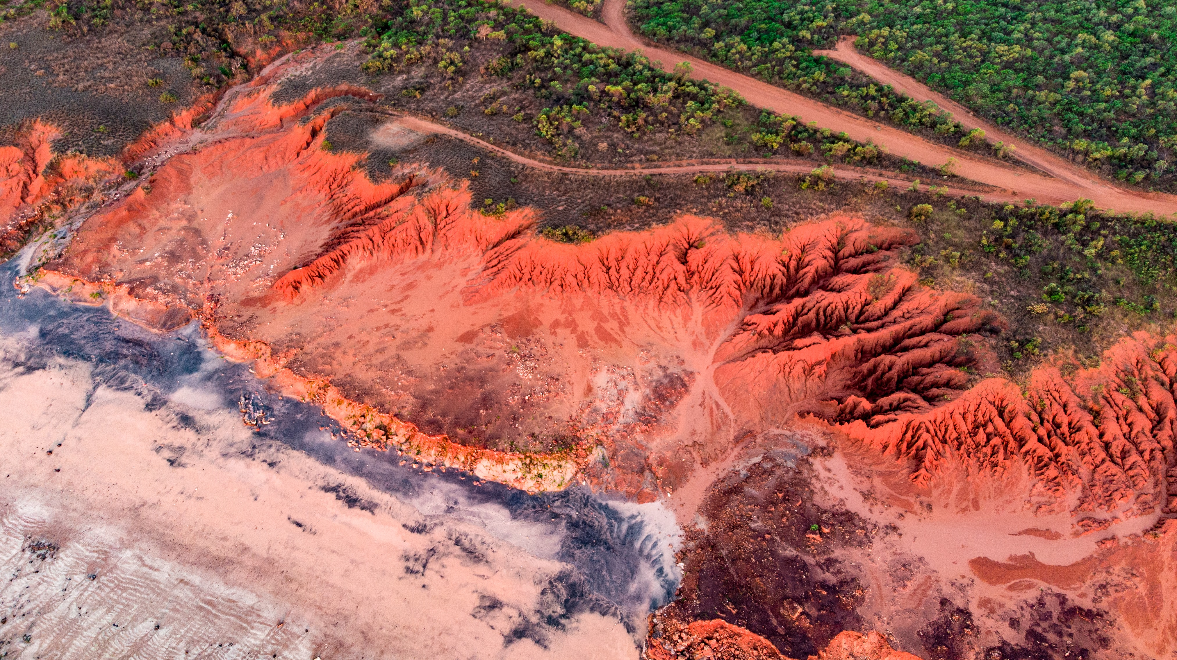 aerial photography of dirt road surrounded with green trees