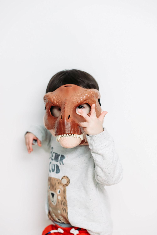 boy holding dinosaur mask