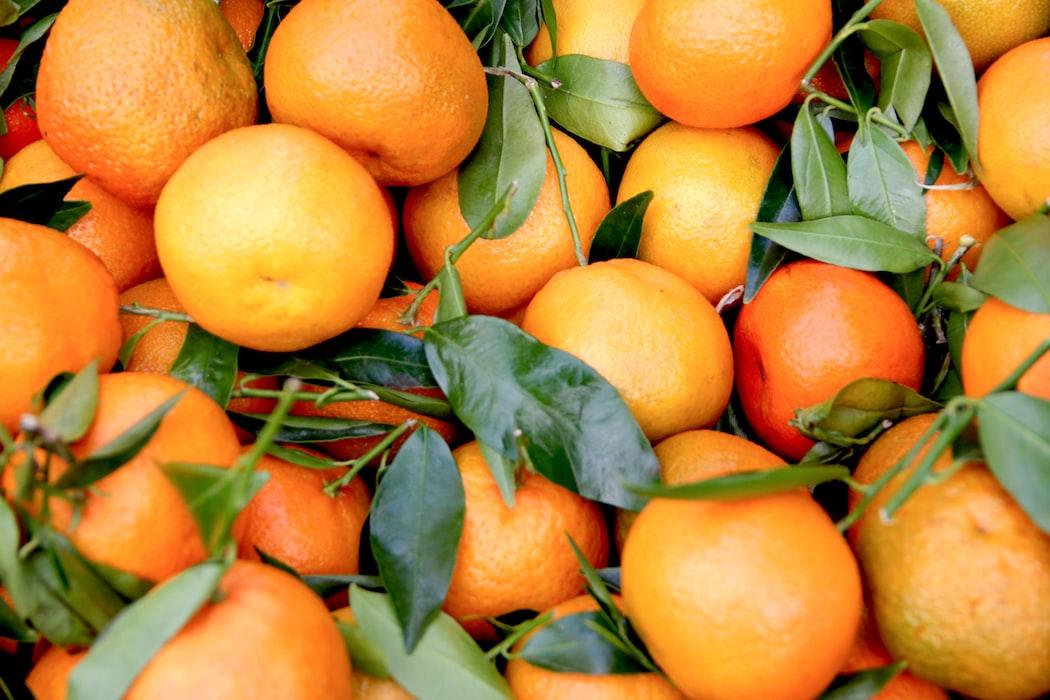 makanan bernutrisi imunitas pandemi oatmeal jeruk