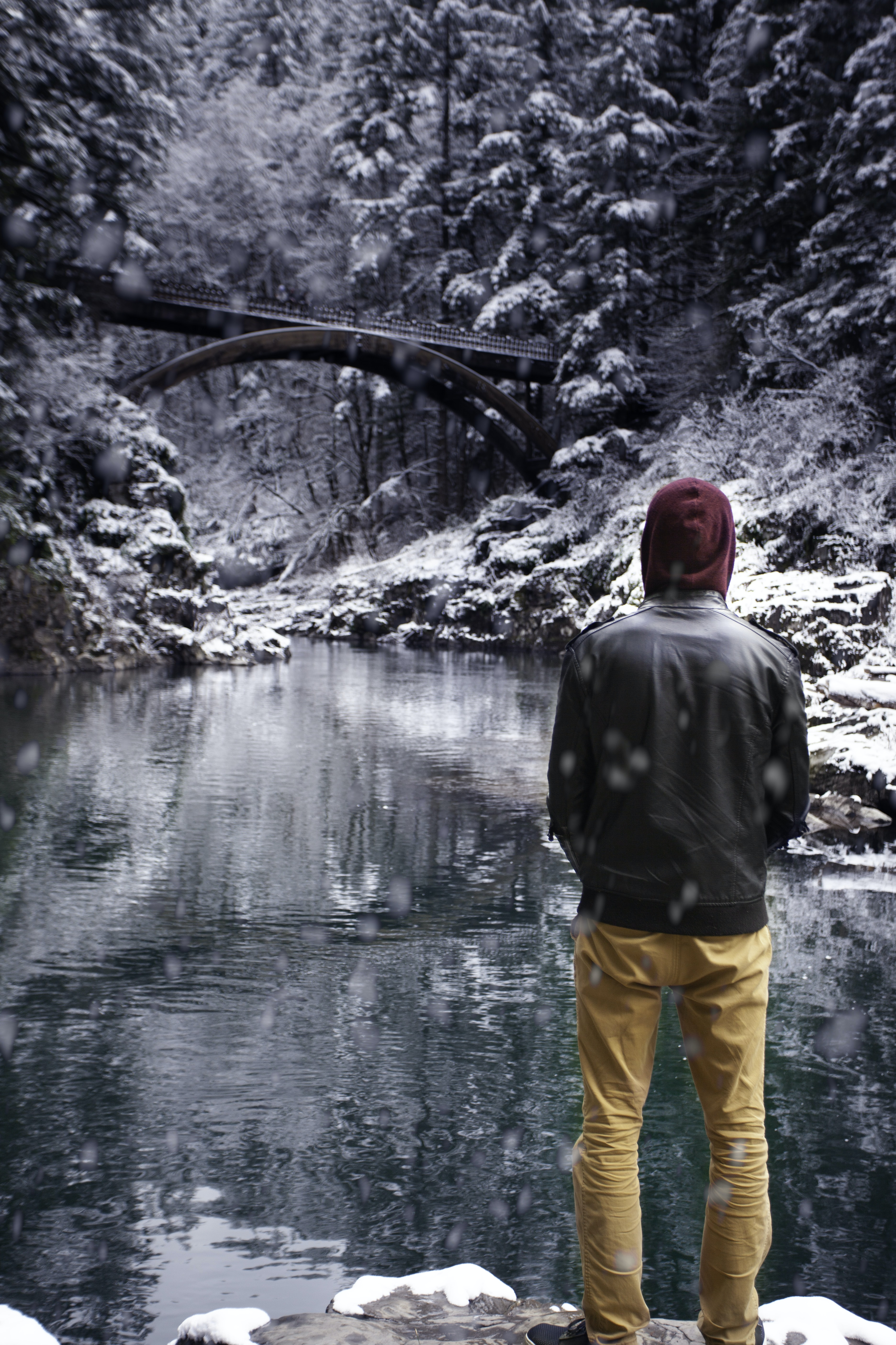man wearing jacket overlooking on calm water and snow covered trees