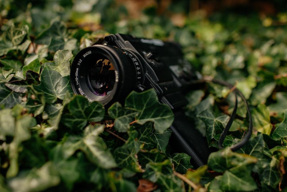 black camera on grass