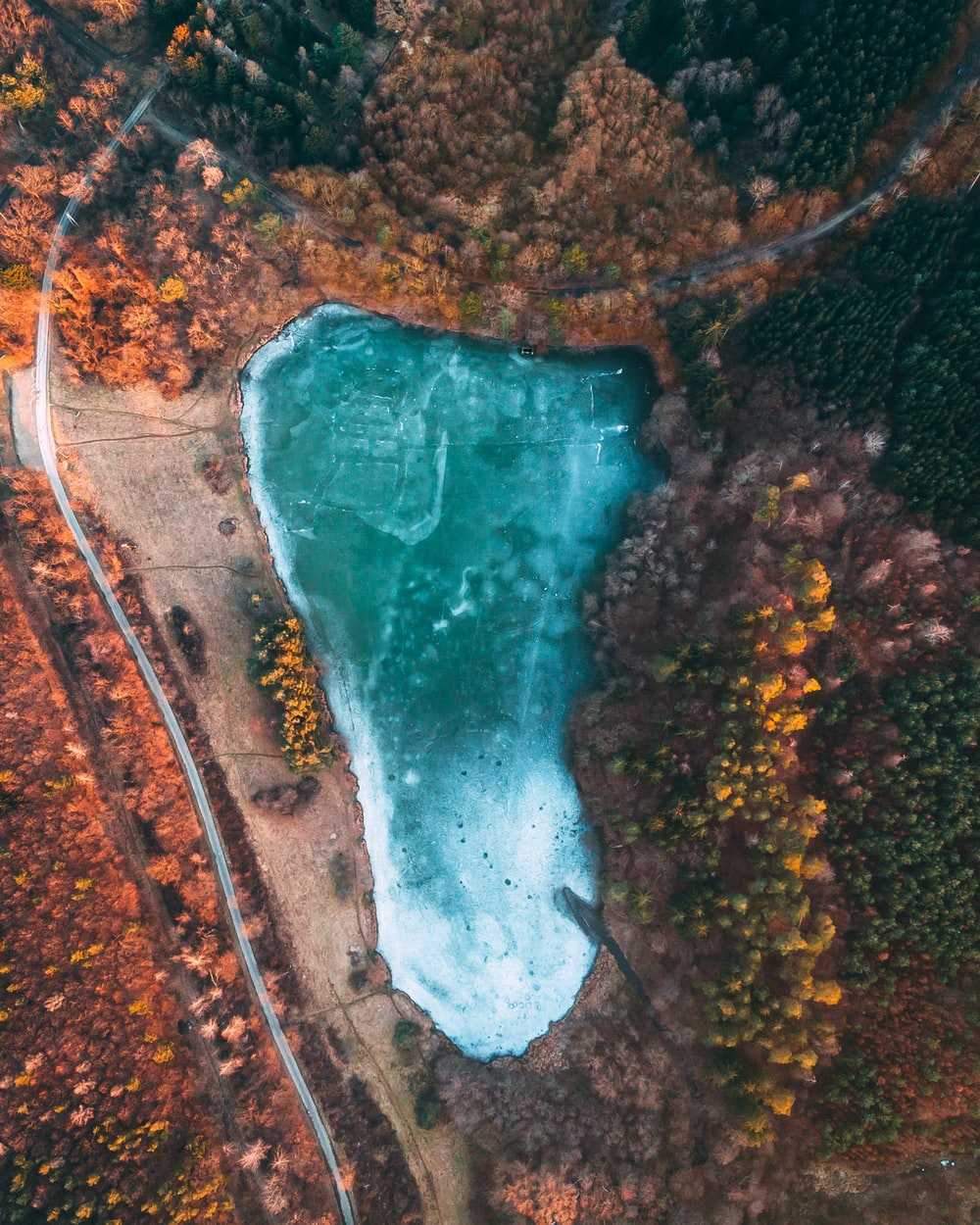 aerial view of lake surrounded by trees during daytime