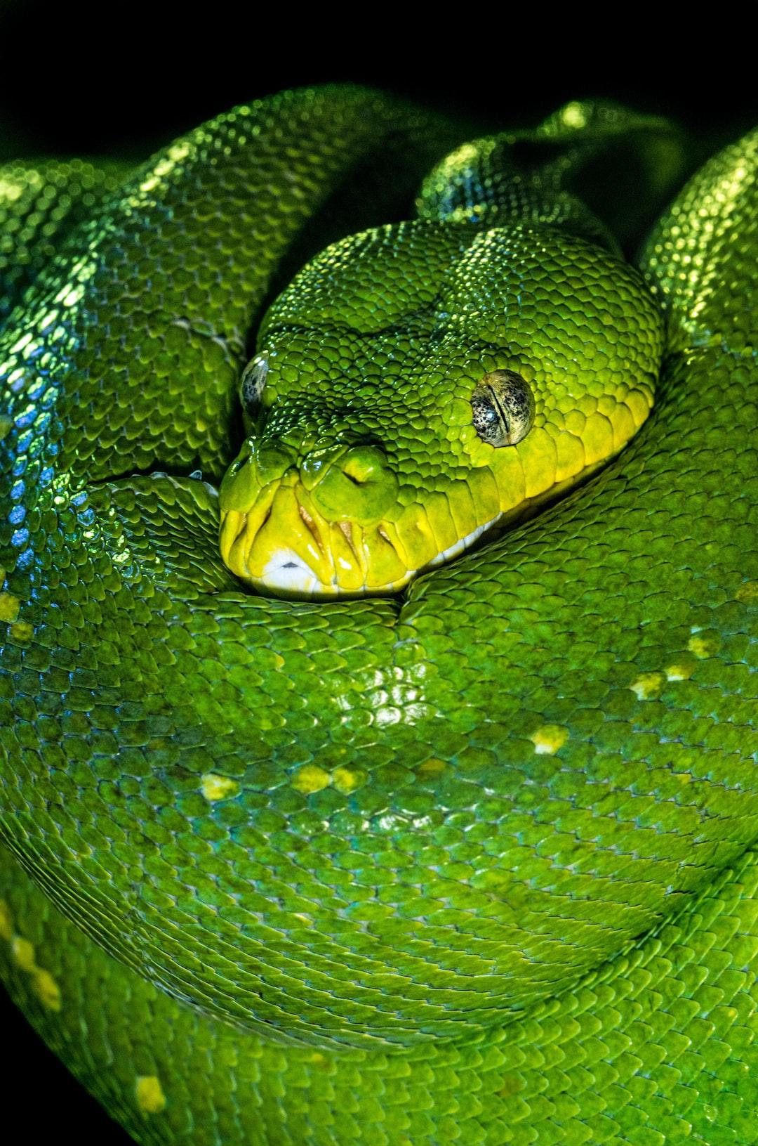 Python : compréhension des intensions en 1 minute