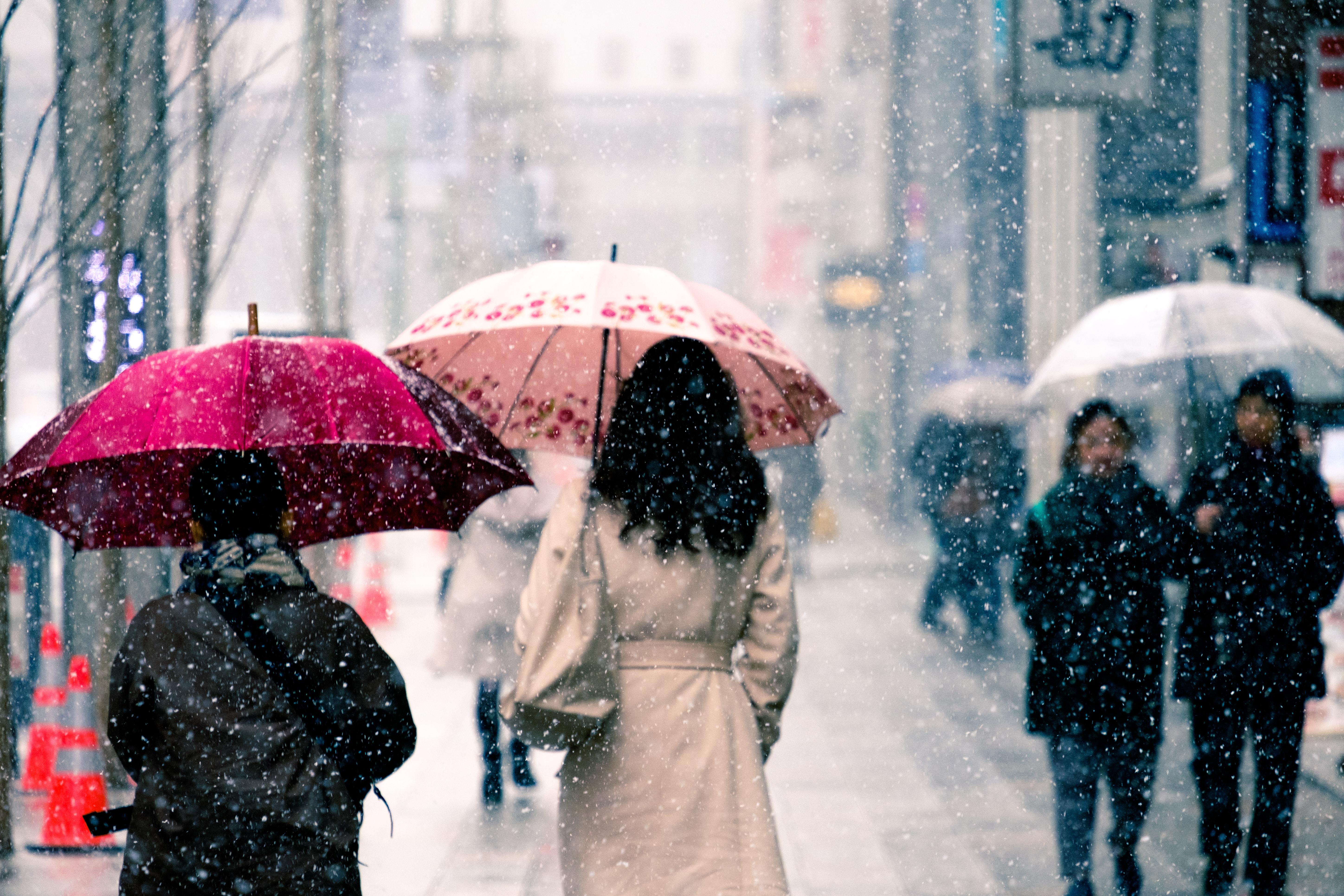 people walking on street under the rain