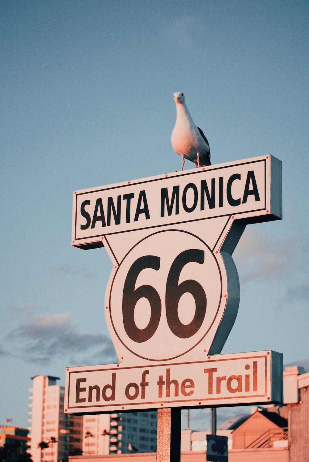 Santa Monica 66 signage