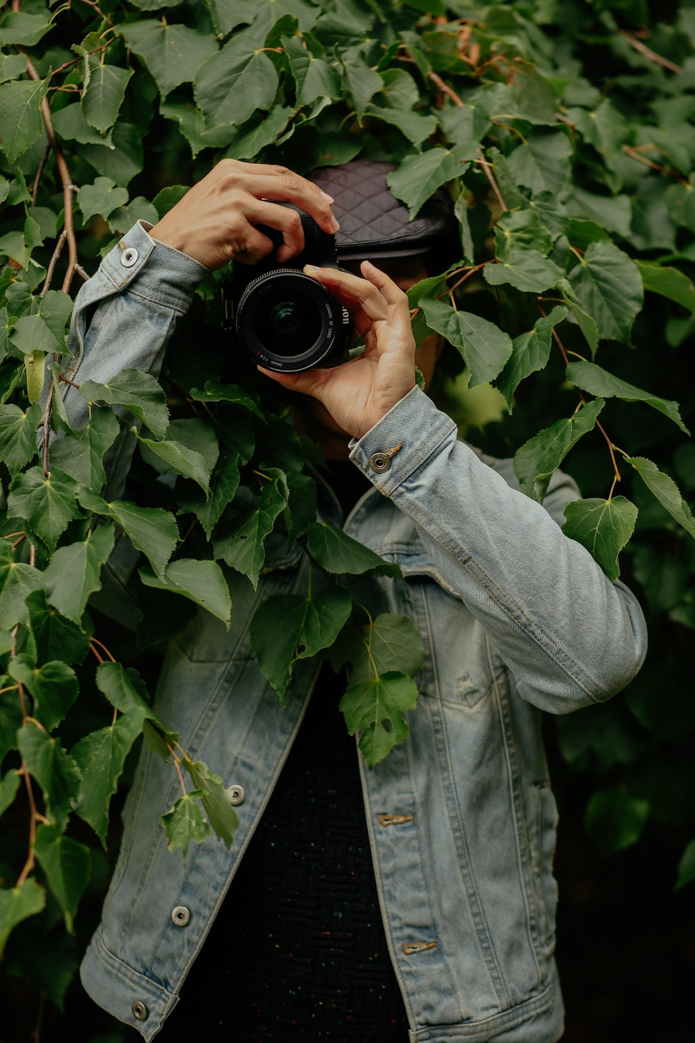 person holding camera standing beside tree