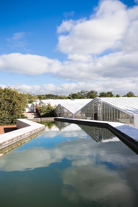 three greenhouse near trees under white sky