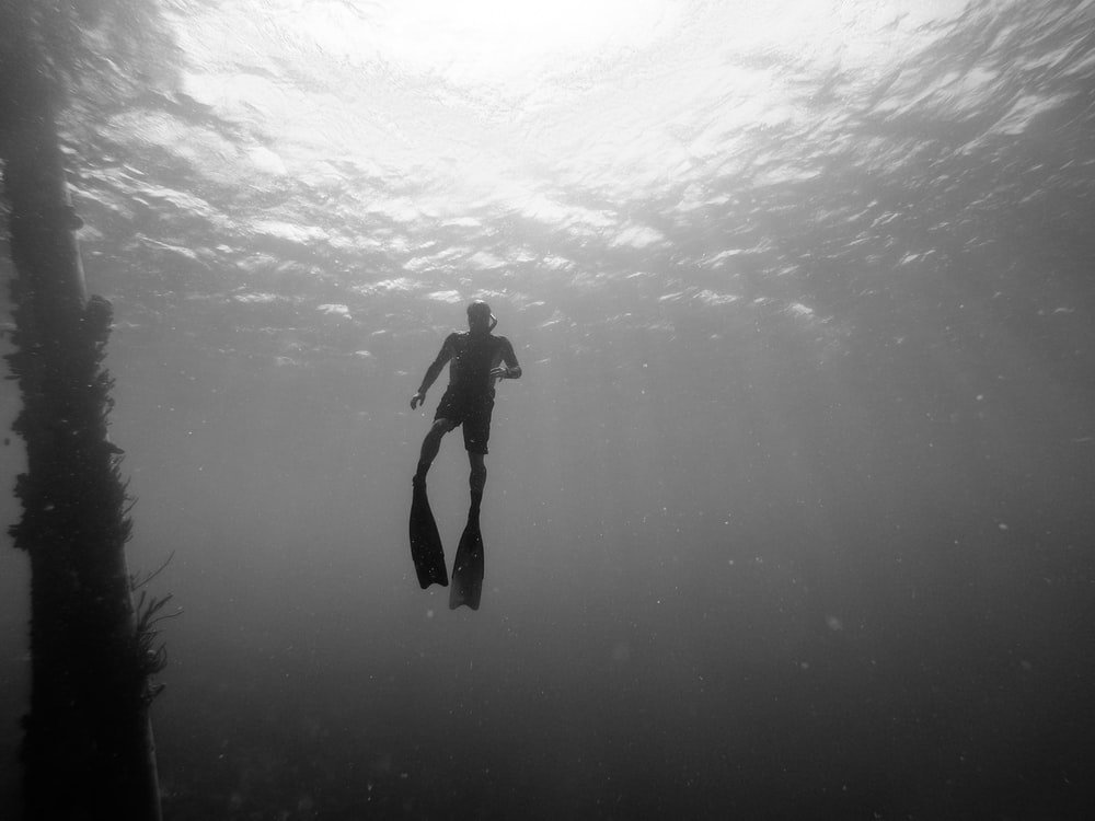 person diving on sea