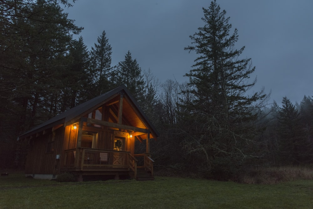 lighted brown wooden cabin near pine tree during night time