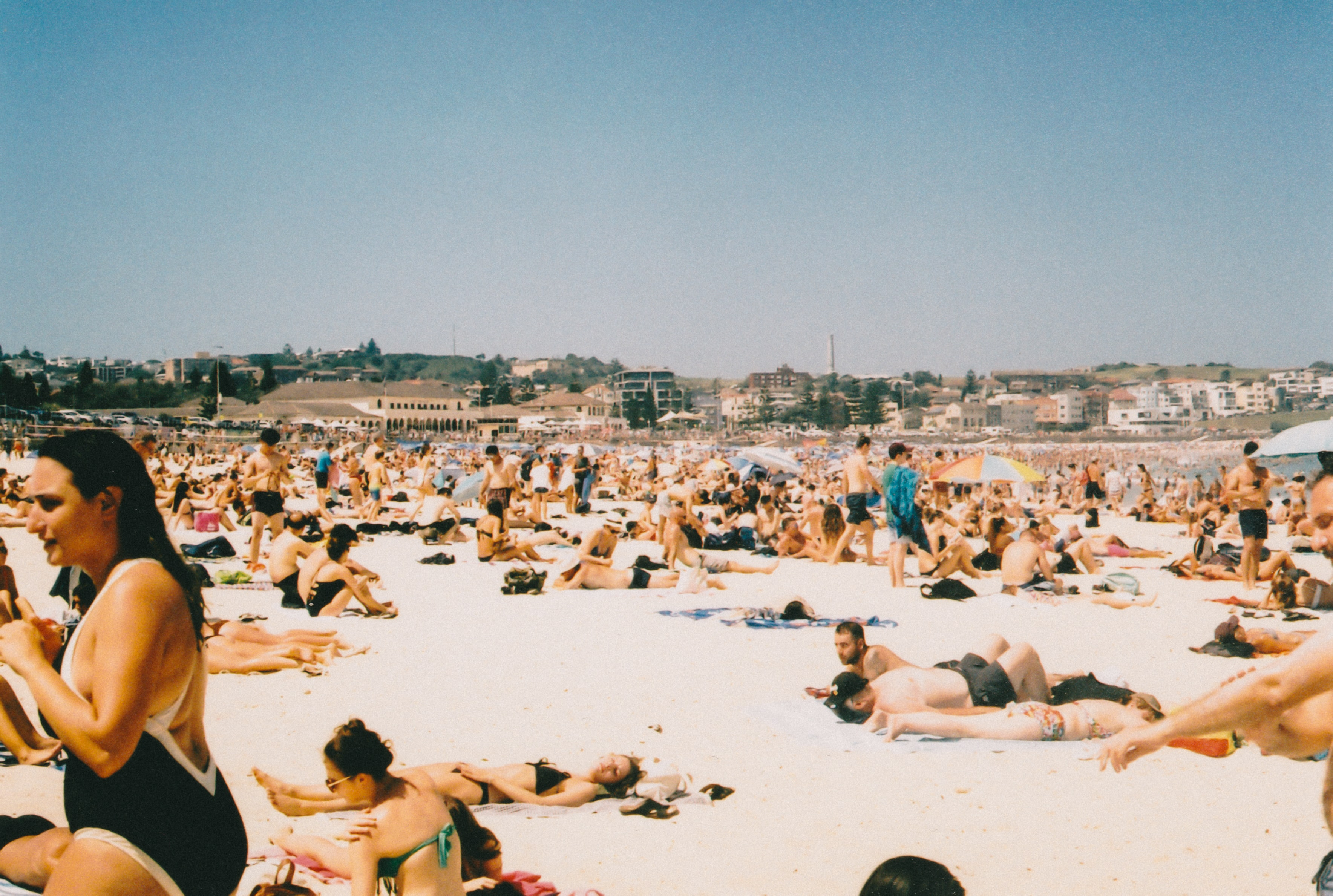 people sunbathing at beach during daytime