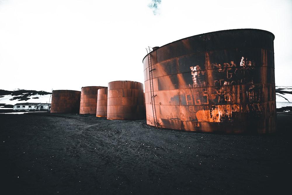 five brown barrel on sand