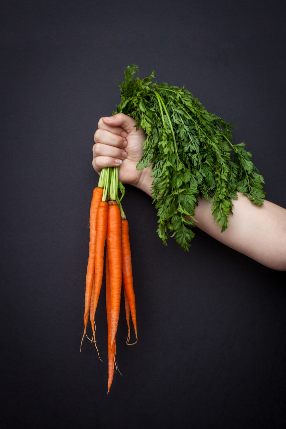 person holding carrots