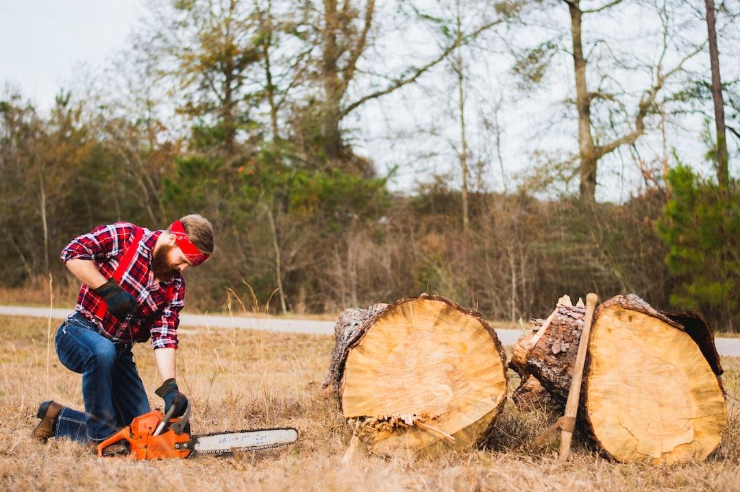 Lumberjack Adventures