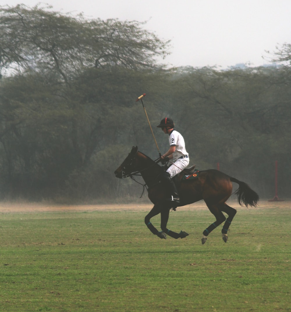 man horse backriding on green field