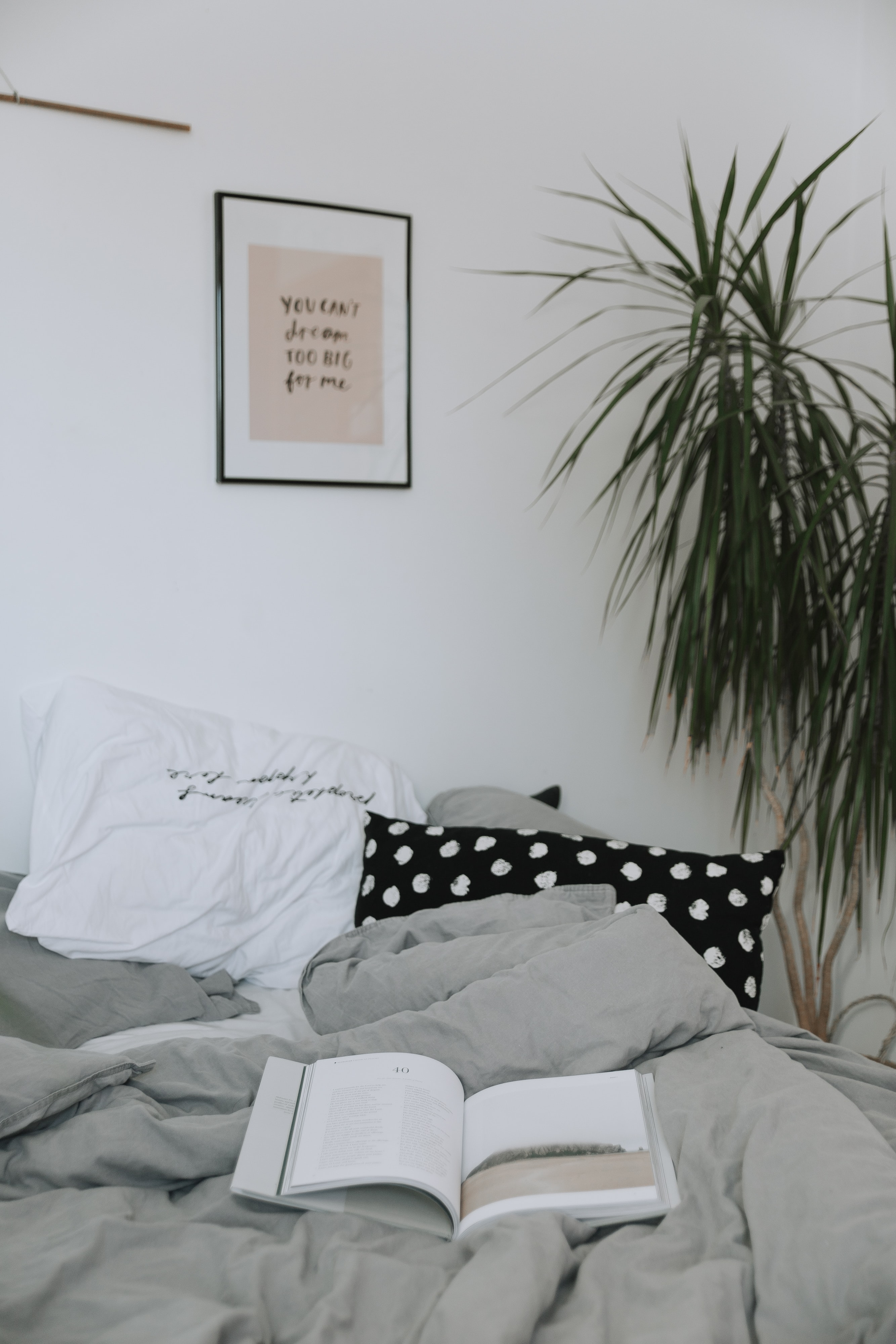 white book on gray blanket beside green-leafed plant