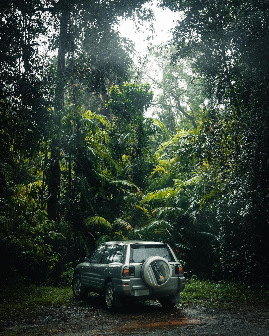 Jurassic Road Trip