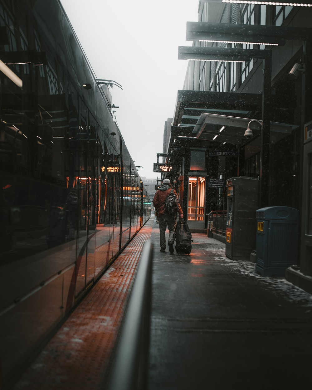 person walking with luggage beside train during daytime