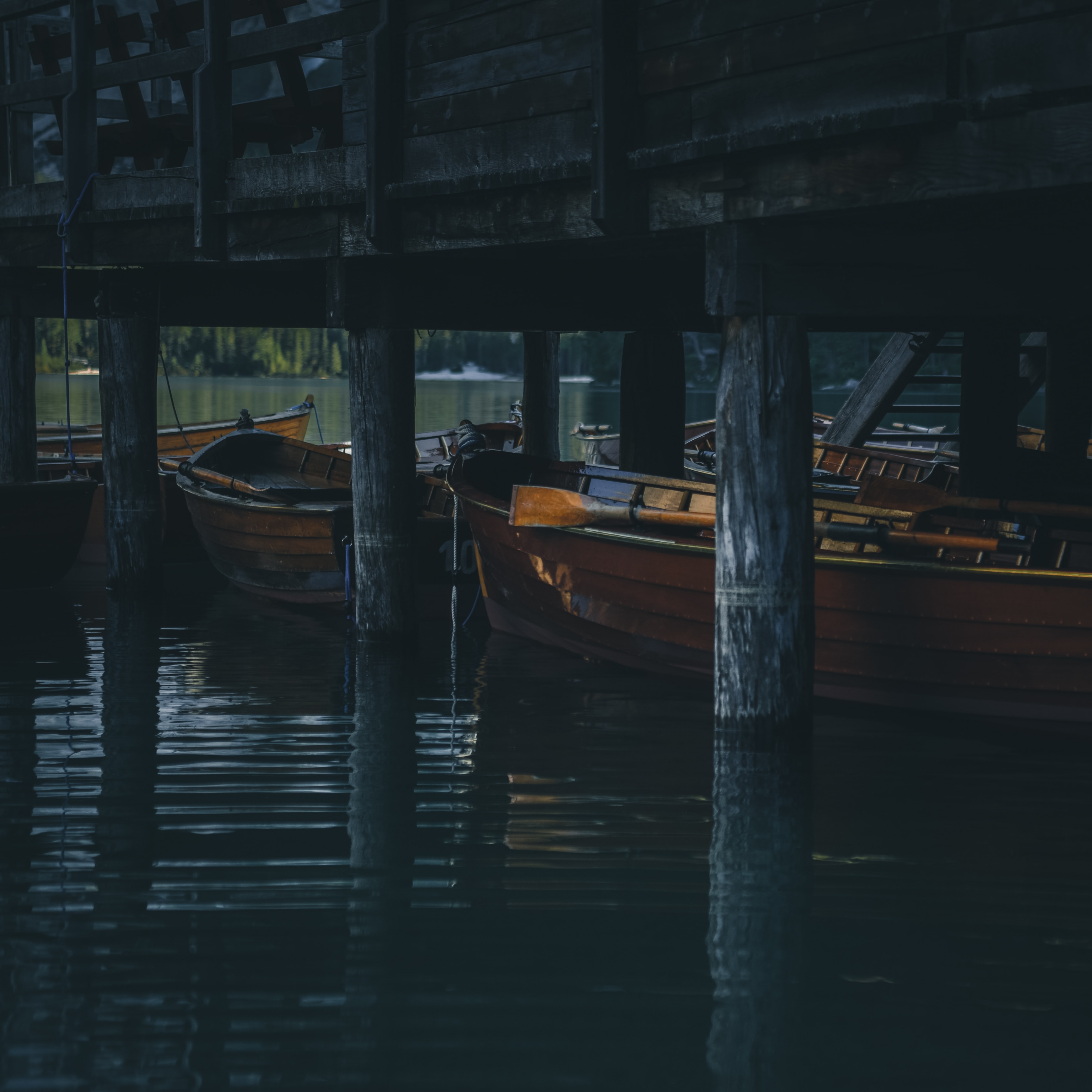 boats under the dock