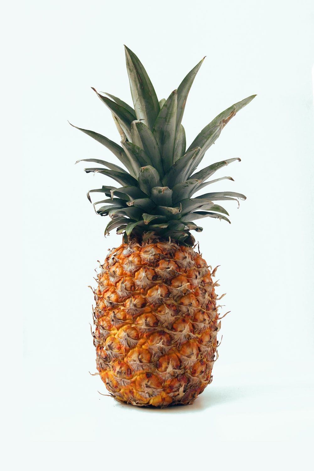 ripe pineapple fruit