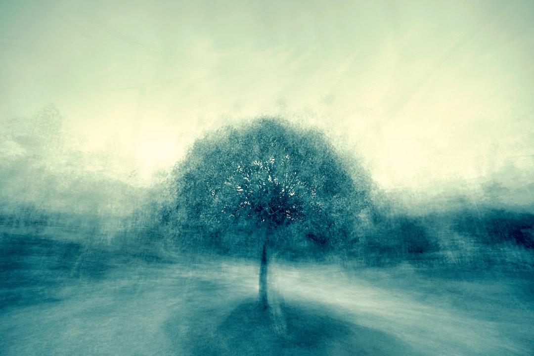 Jazz Tree - 1