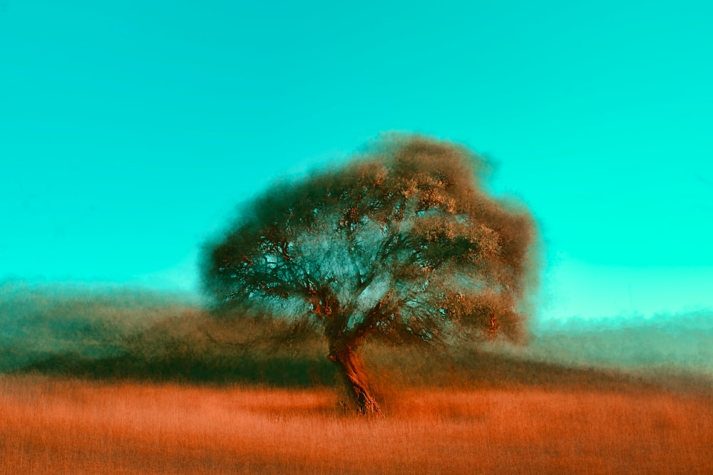 tree on grassfield painting