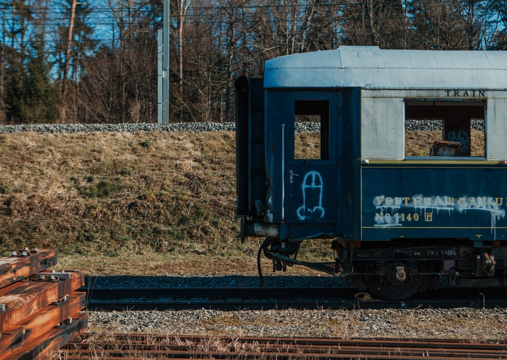 white and black train