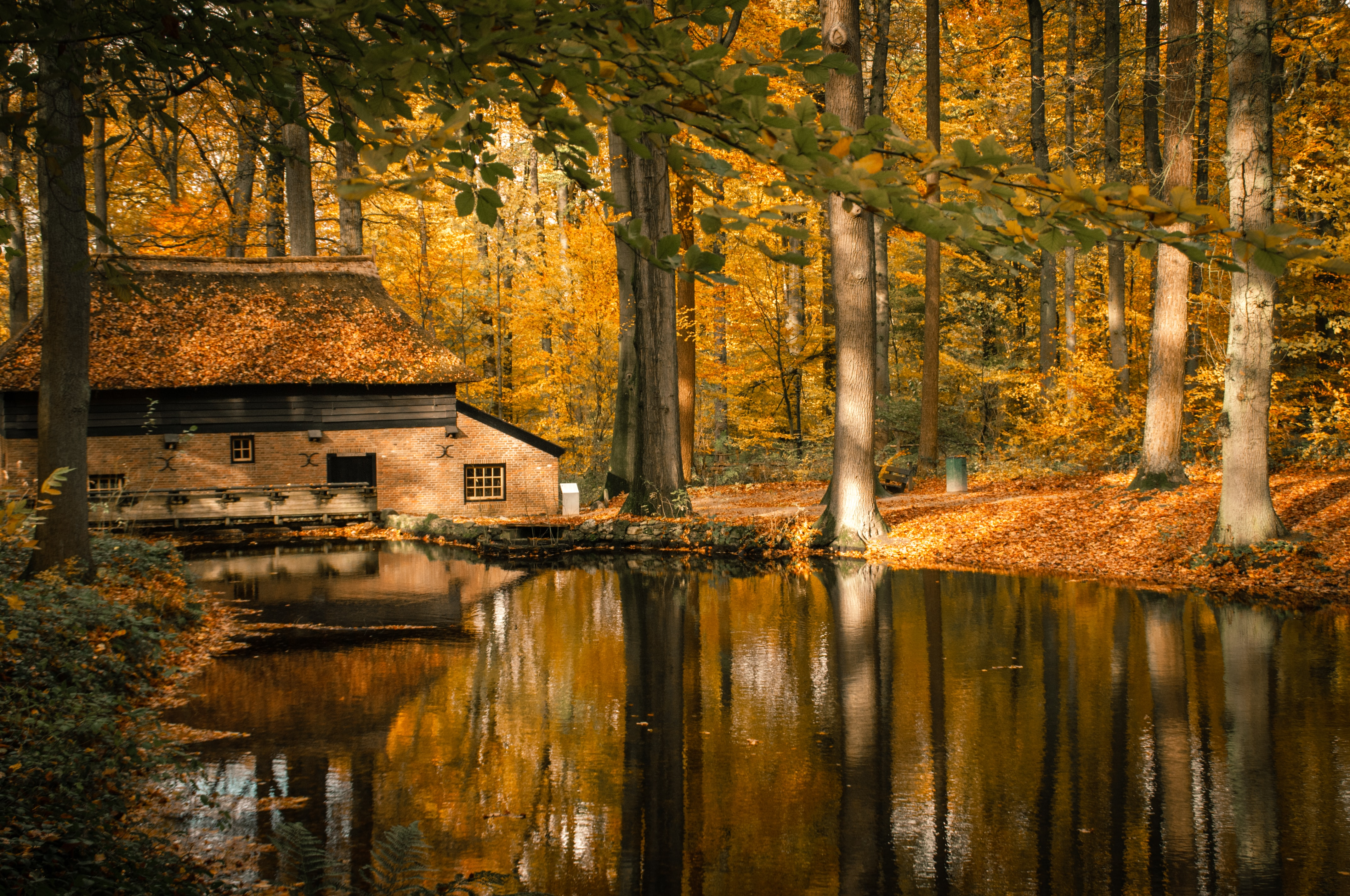 brown house beside calm body of water