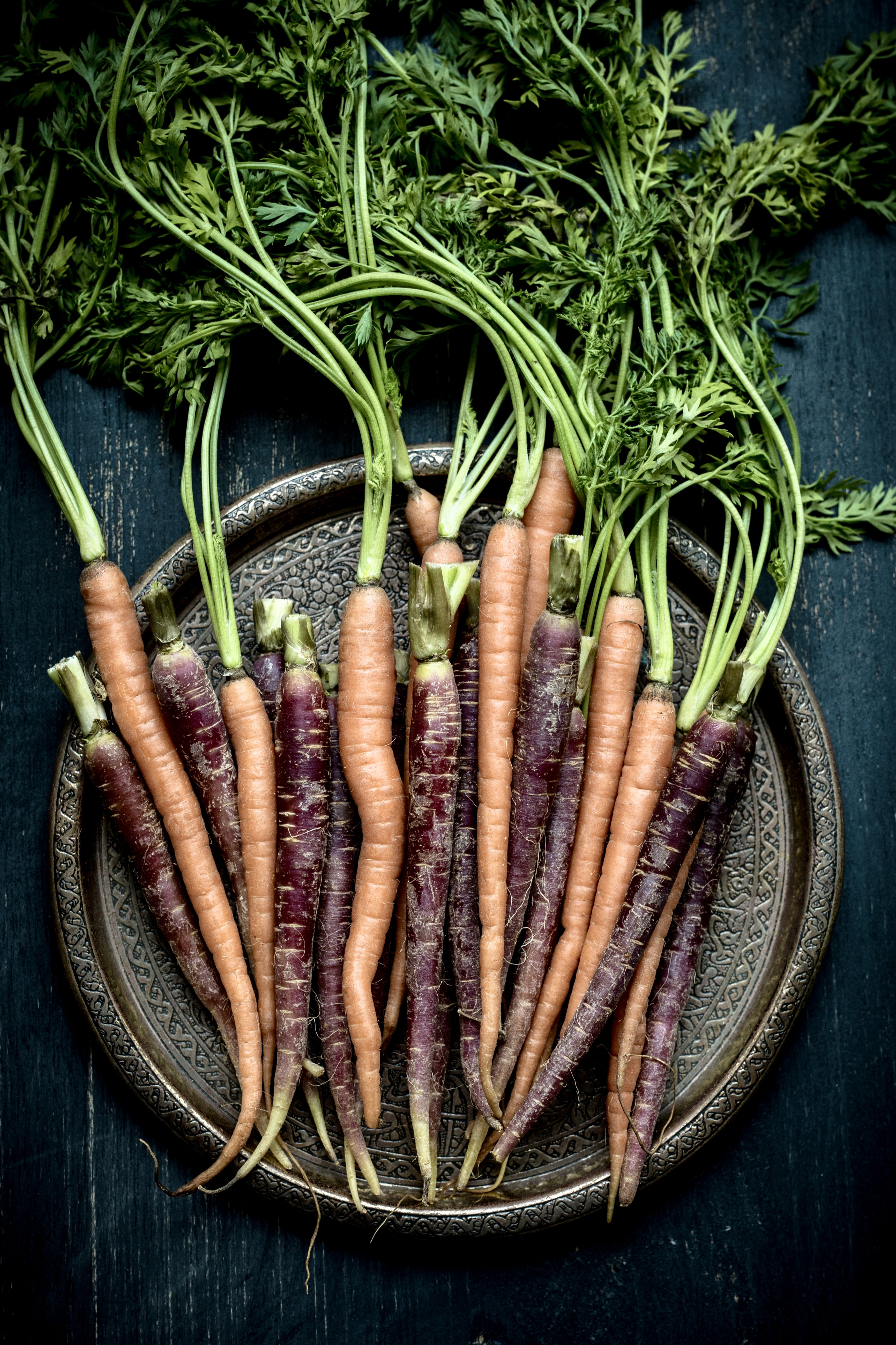 Varieties Of Carrots | How To Grow Carrots | A Complete Garden Season Growing Guide