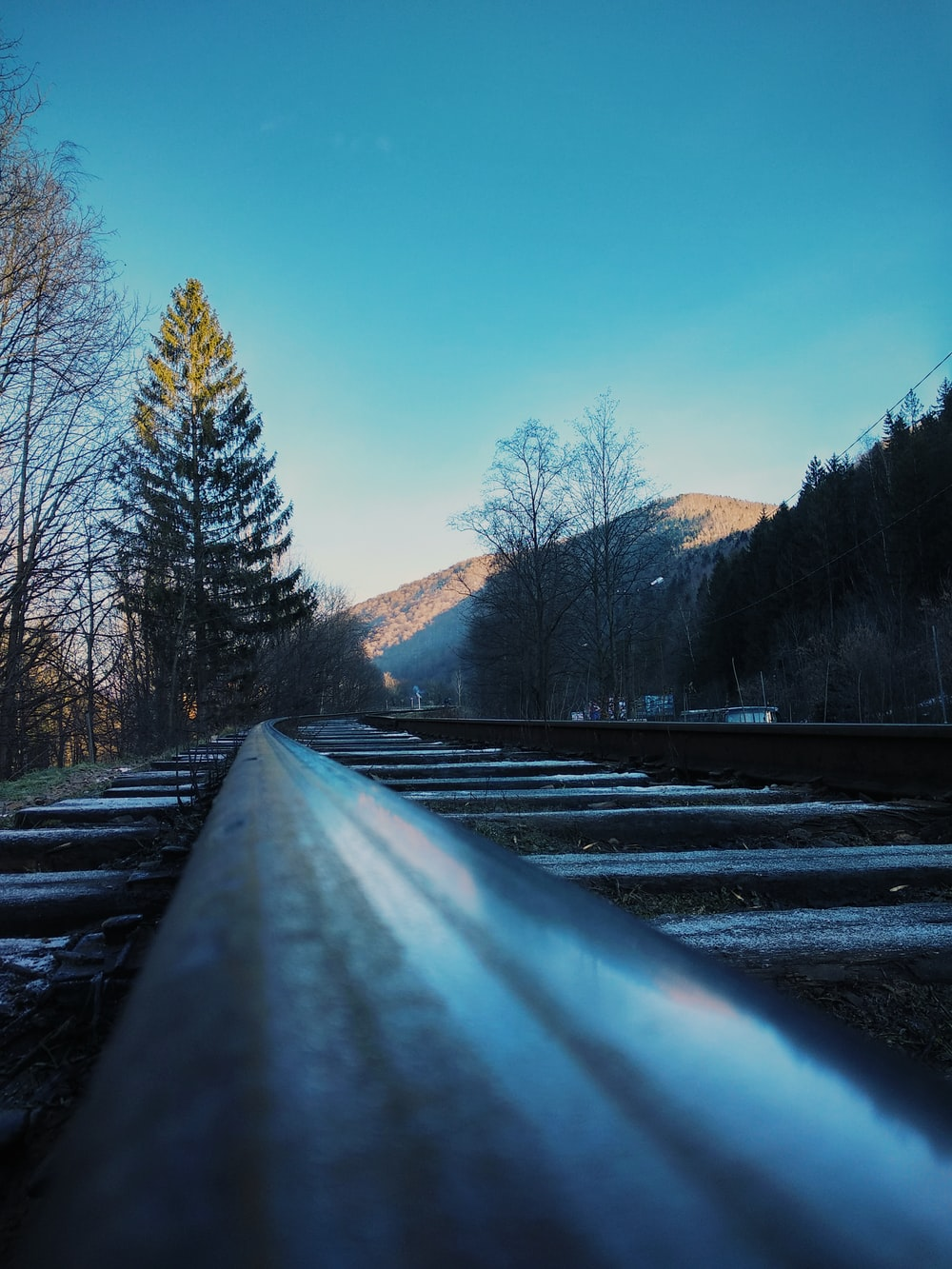 train tracks with trees and mountain in the background