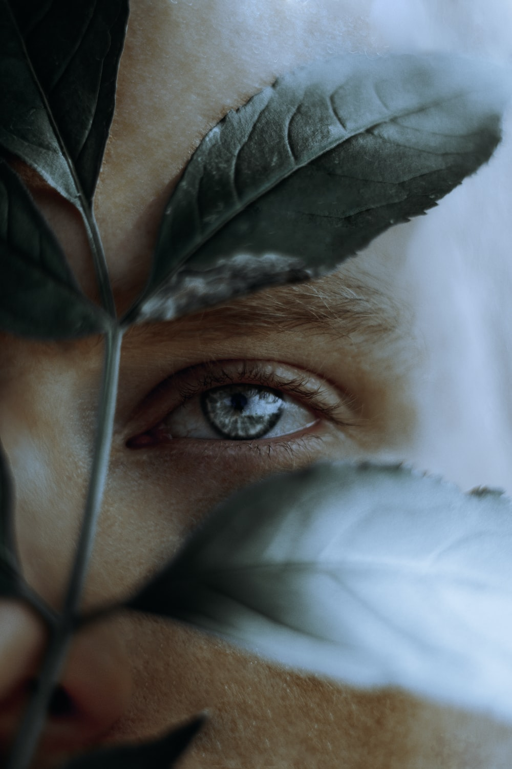 focus photography of man's face with leaves