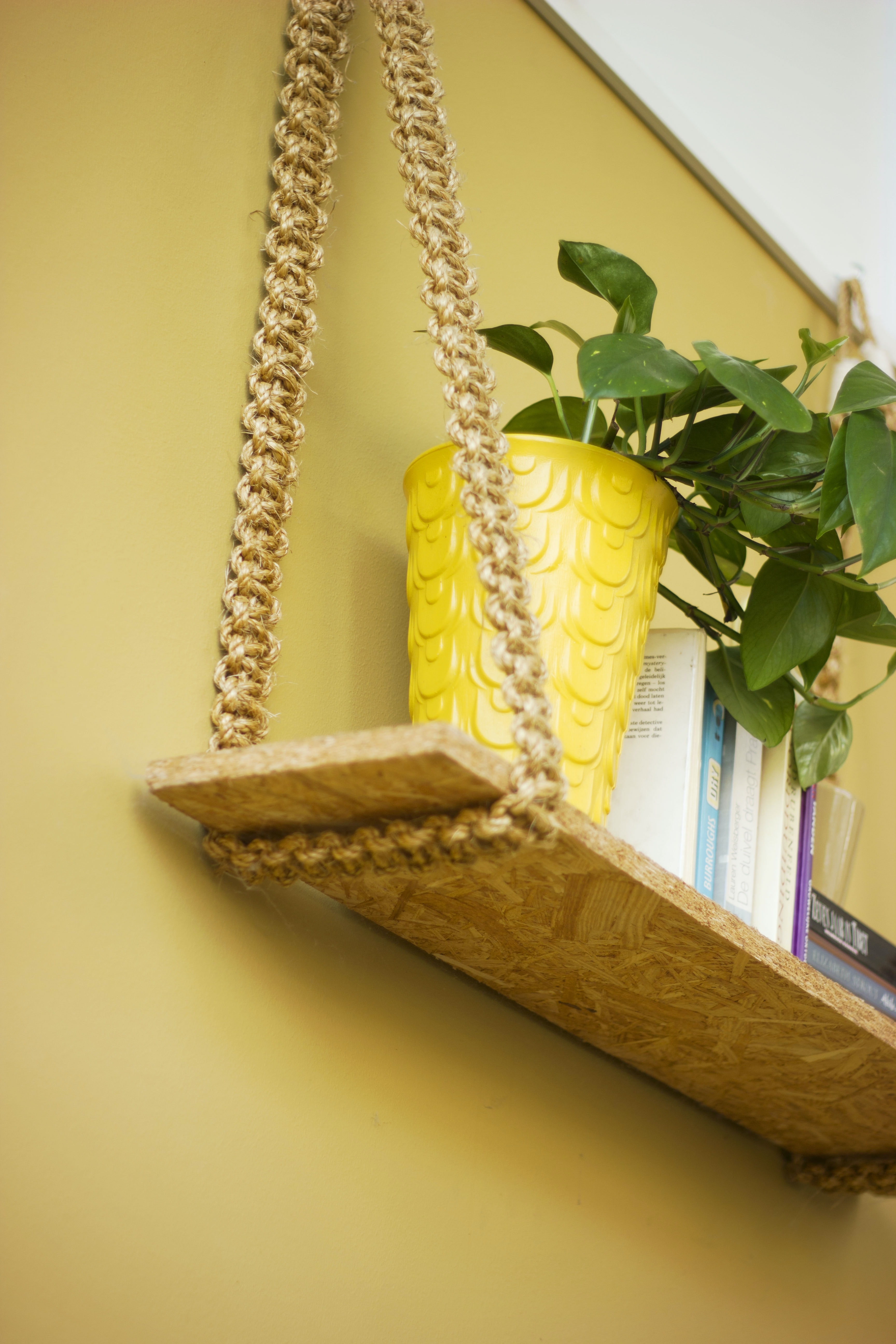 green-leafed plant in yellow pot on brown wooden wall shelf