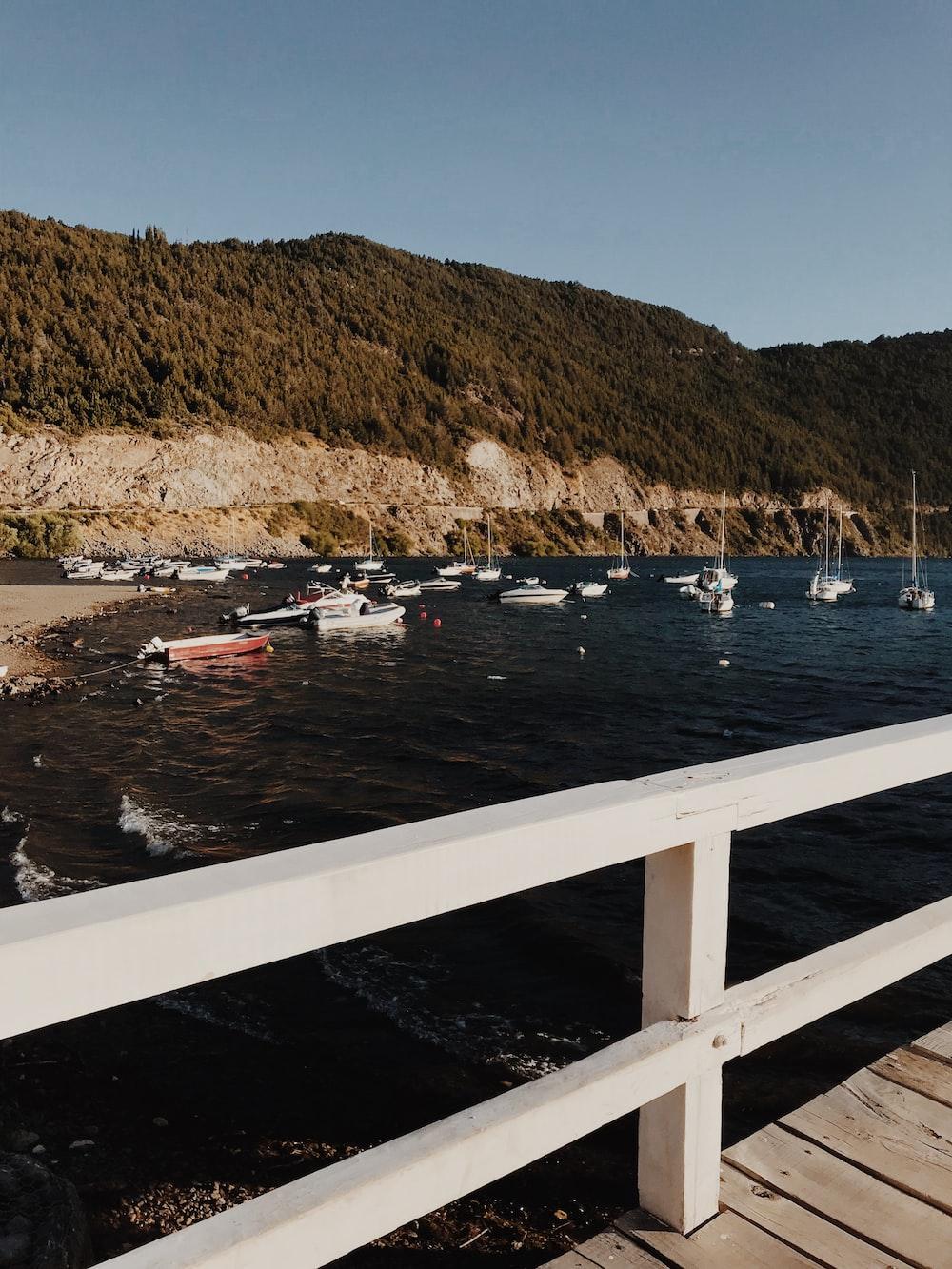 sailboats on harbor