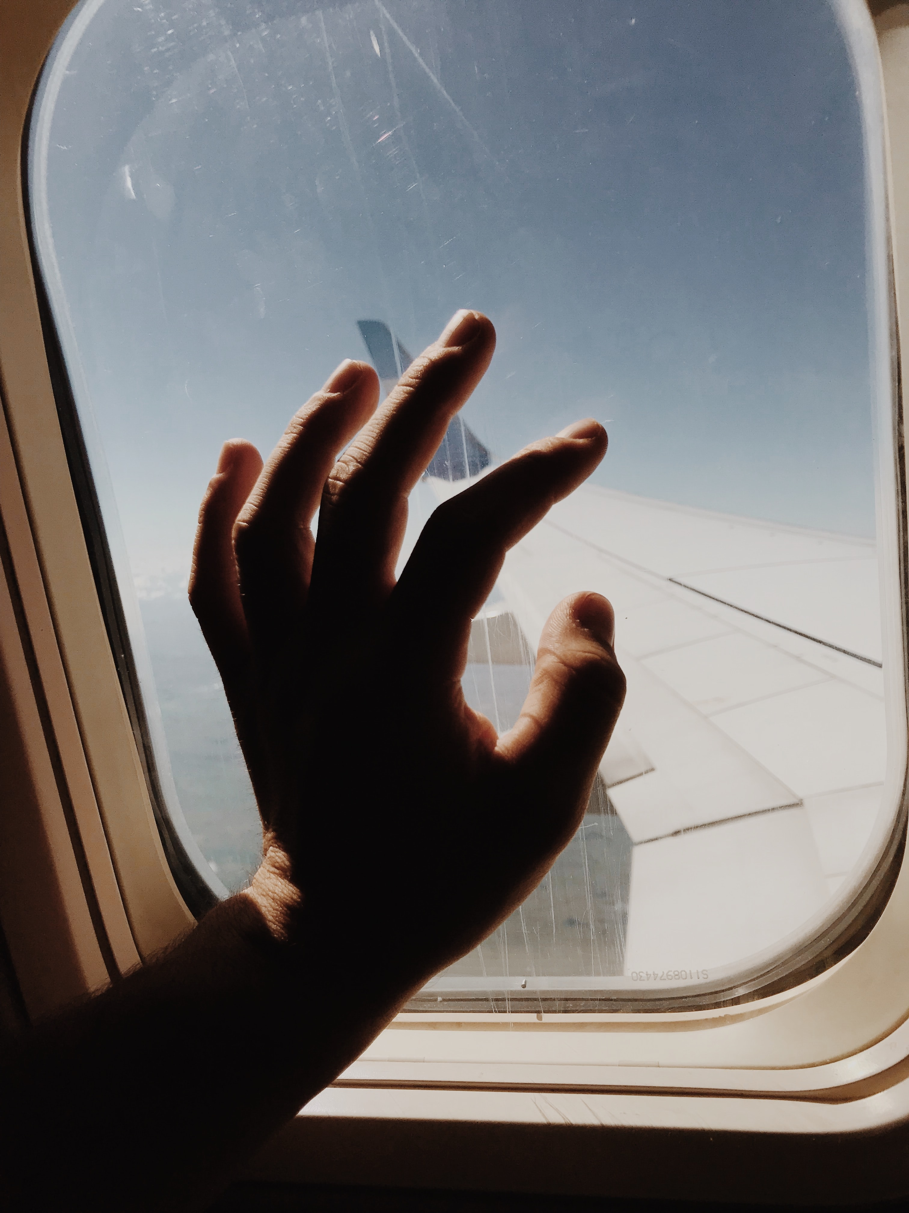 person holding glass of airline