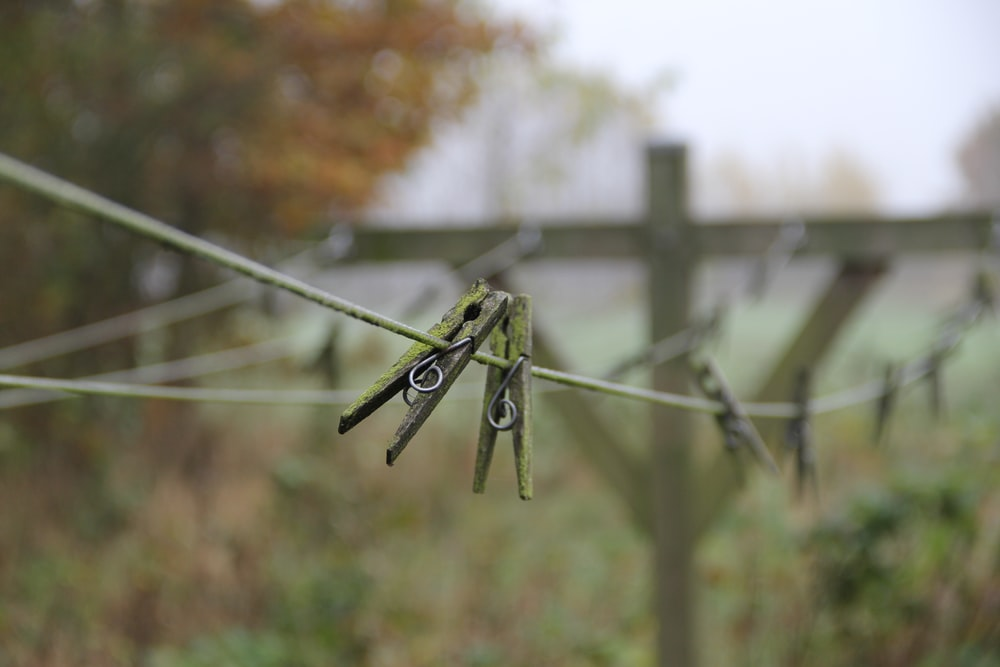 selective focus photography of two clothes pegs on wire