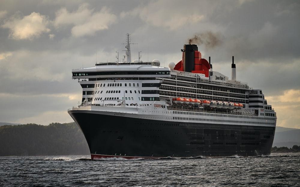white and black cruise ship