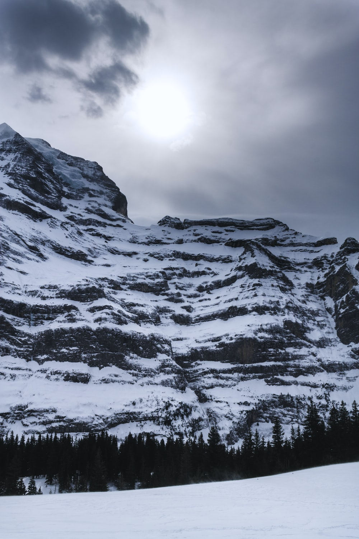 brown alpse mountain