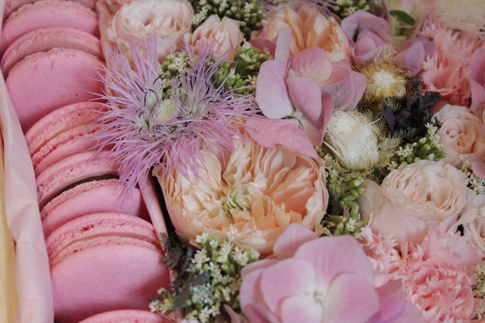 macaroon and pink-petaled flowers