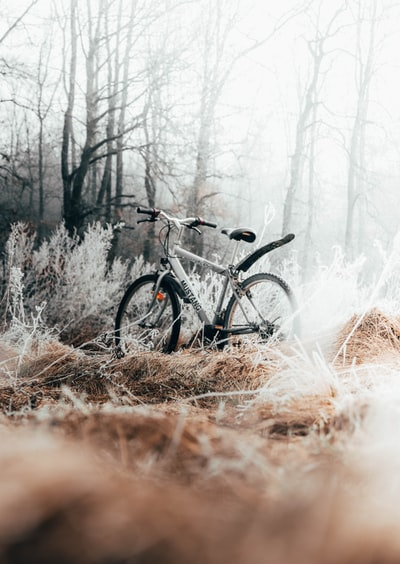 gray bicycle on brown grass during daytime