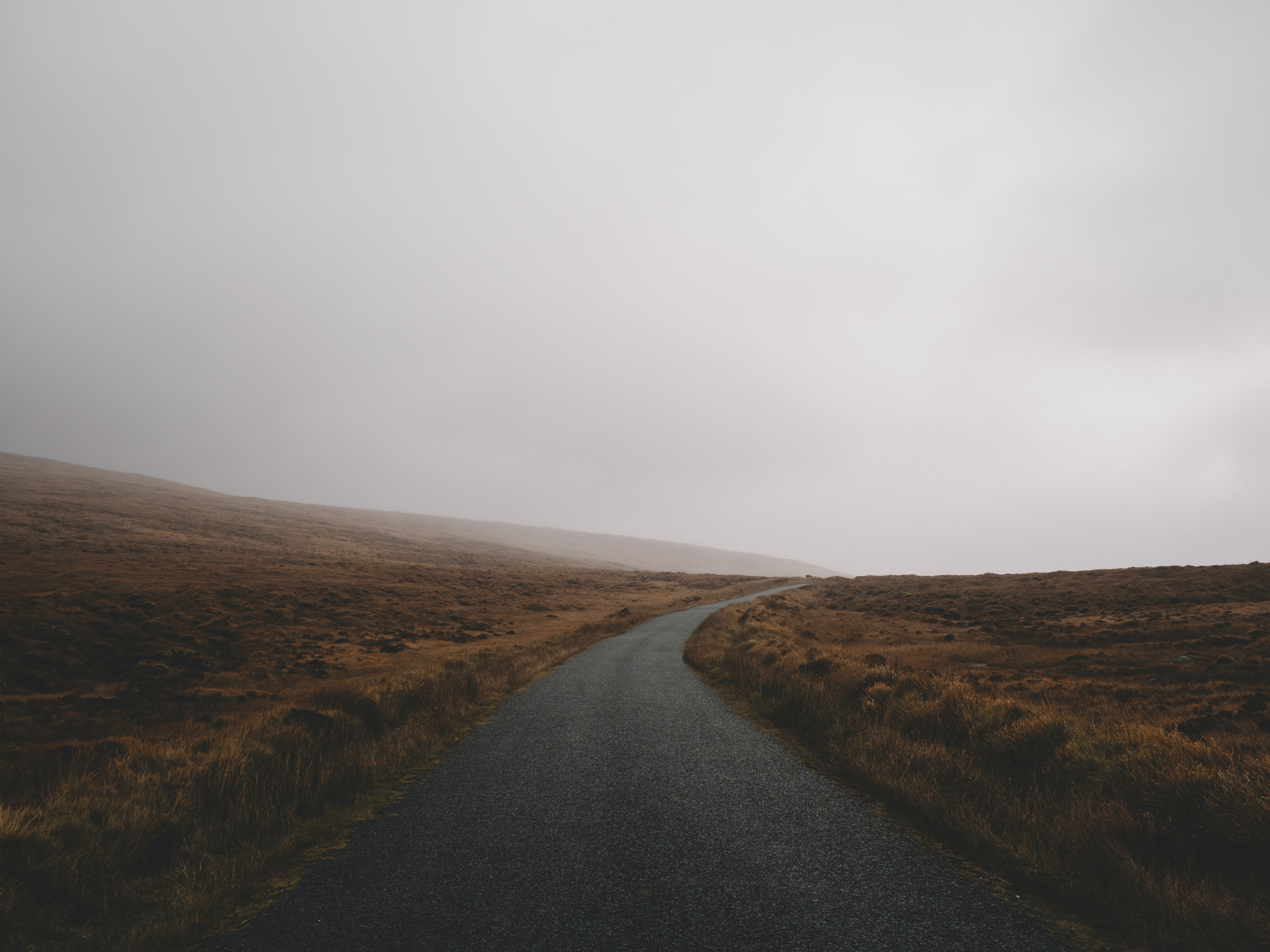 road during foggy weather