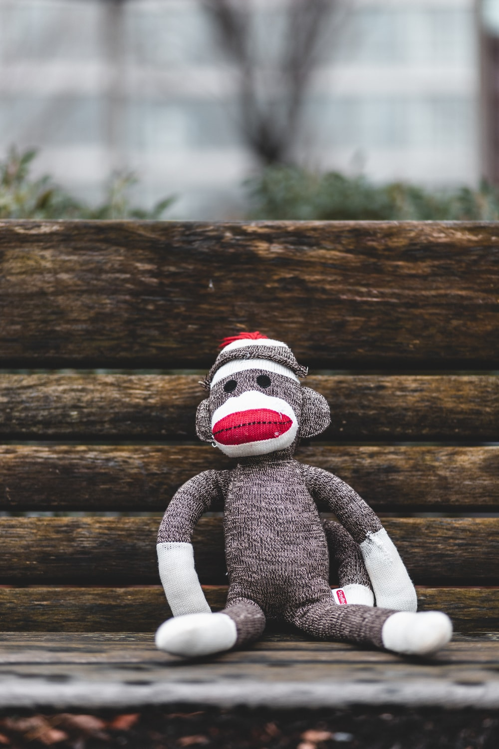 gray and white monkey plush toy sitting on wooden bench