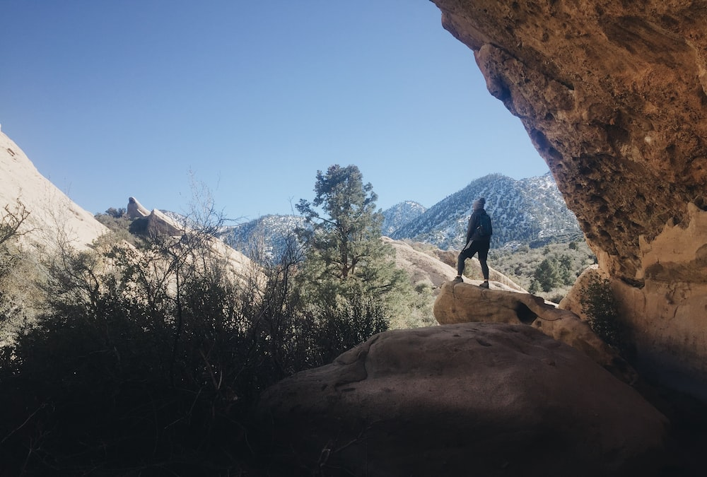 person standing on brown rock during daytime