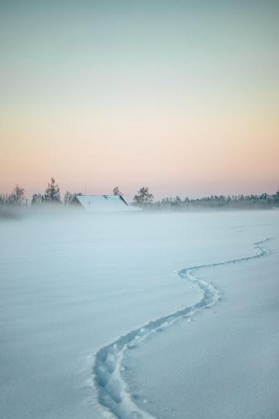 track on white snow