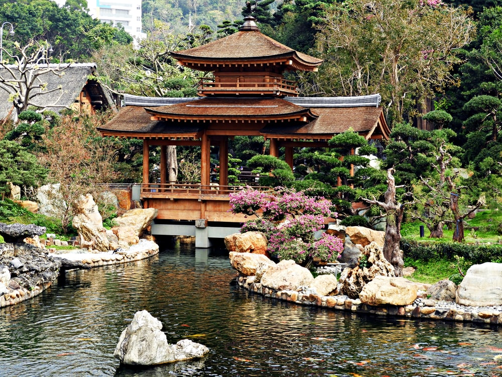 brown wooden temple near pond