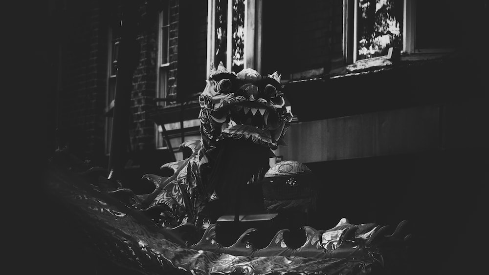 dragon grayscale photo
