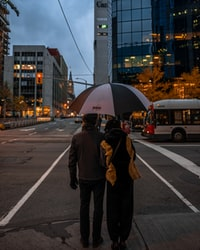 man and woman about to walk on pedestrian lane while holding umbrella during nighttime