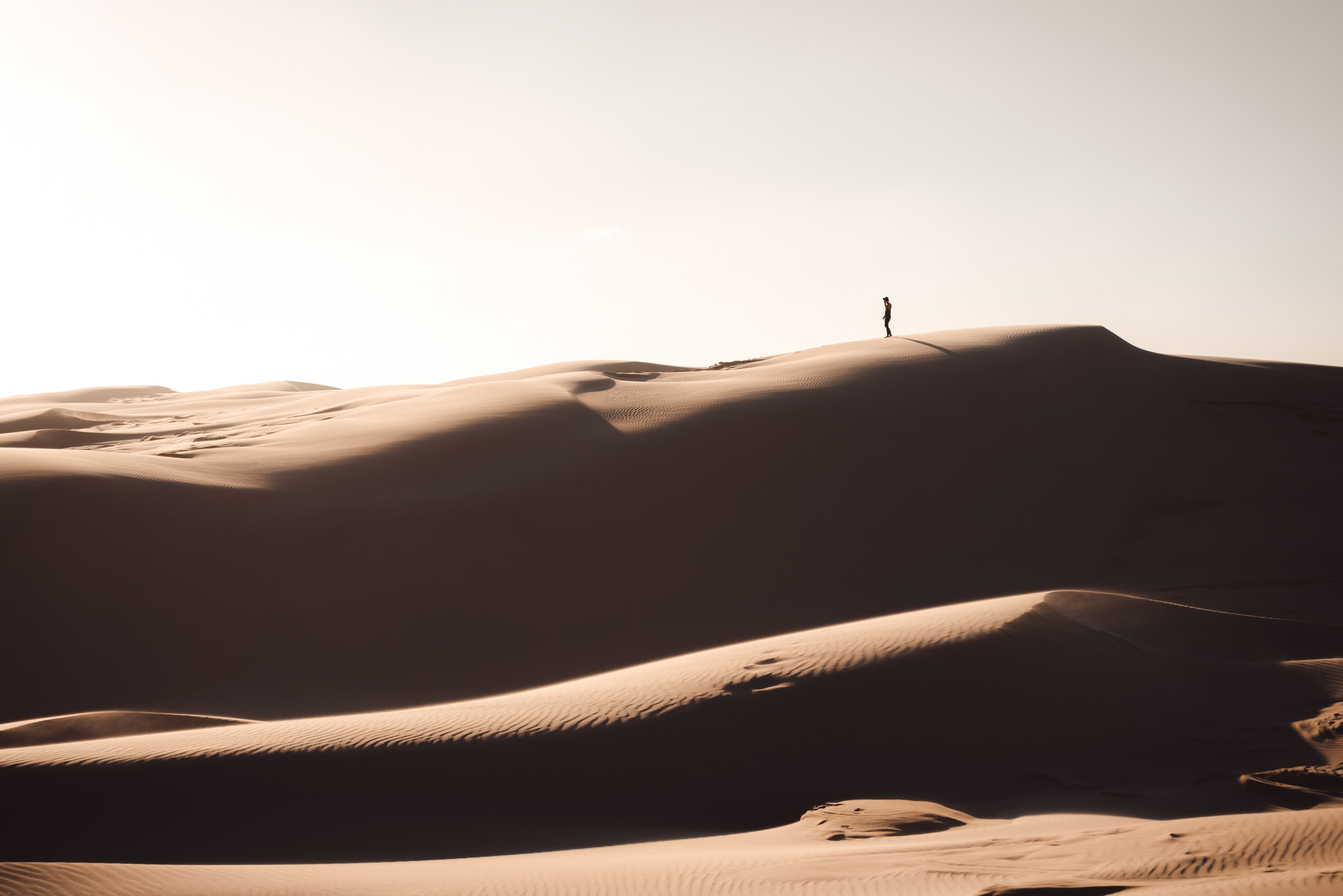 silhouette of person standing on brown sand